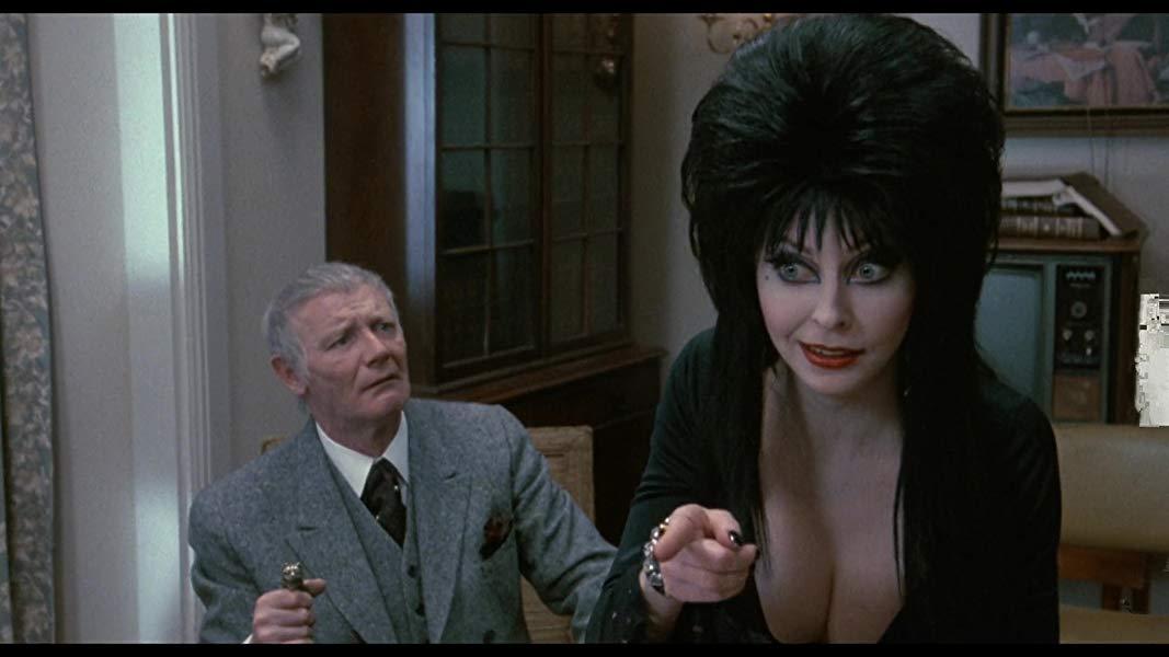 Elvira mistress of the dark scenes — pic 9